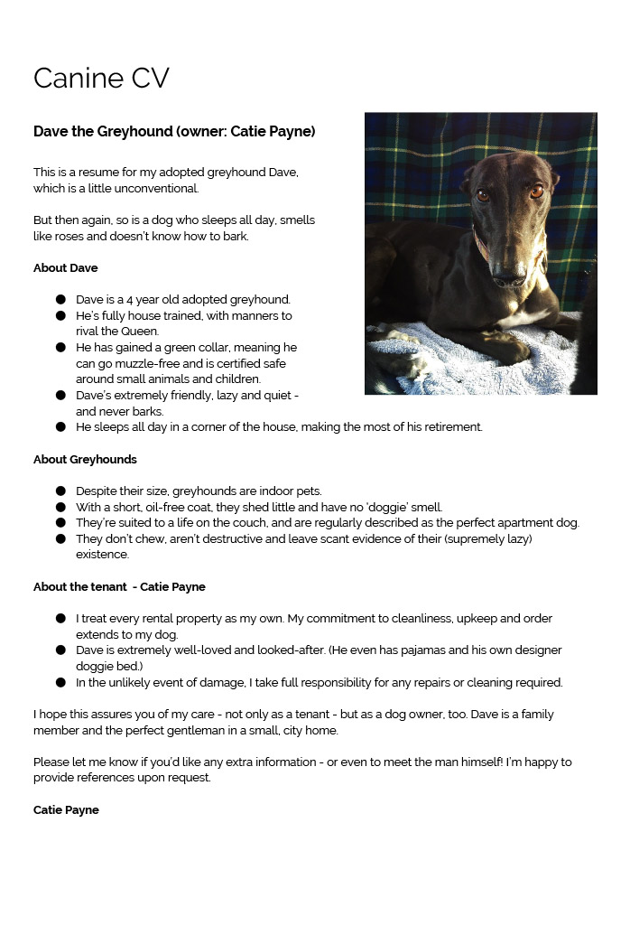Renting Think You Can T Adopt A Greyhound Think Again